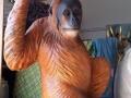 orang outan animaux en résine classique  005