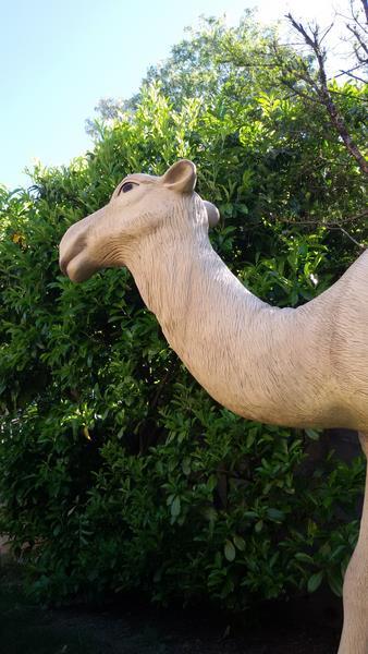 Dromadaire chameau animaux en résine classique 004
