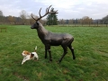 cerf en résine animaux de la forêt design cerf 006