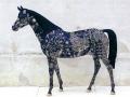 cheval en résine classique 018