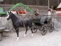 cheval en résine classique 019