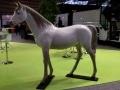 cheval en résine A709design 041