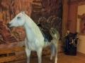 cheval en résine A709e design 002
