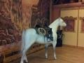 cheval en résine design 030