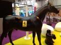 cheval en résine design 051
