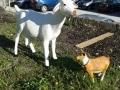 chèvre en résine design 003