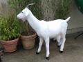 chèvre en résine design 004