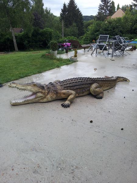 Crocodile animaux en résine classique  019