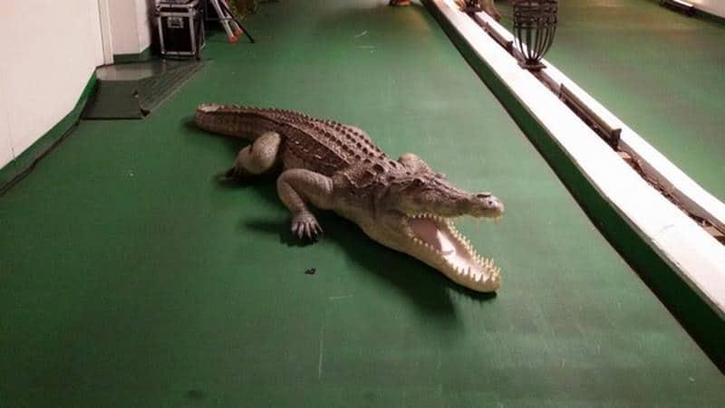 Crocodile animaux en résine classique  029