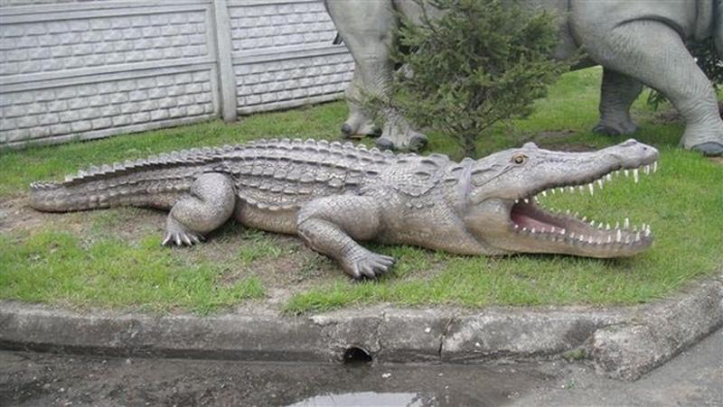 Crocodile animaux en résine classique  036