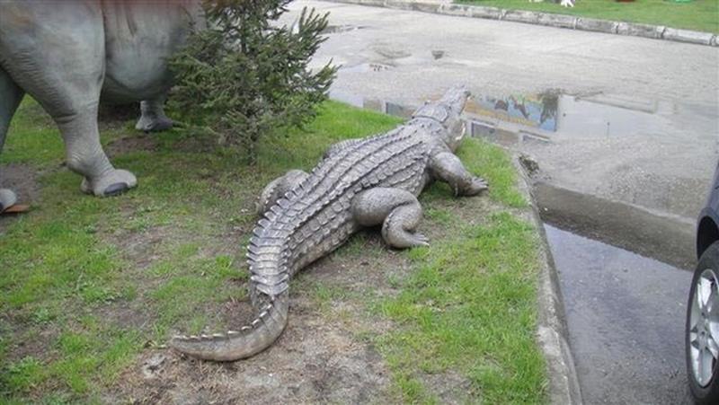 Crocodile animaux en résine classique  049