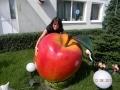 fruit légume en résine design  031