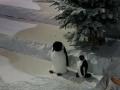 location reine des neiges event animaux et objets en résine  005