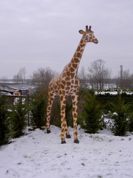 Girafe animaux en résine classique  132