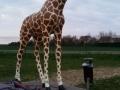 Girafe animaux en résine classique  120