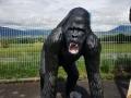 Gorille animaux en résine classique  137