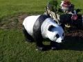 panda animaux en résine 015