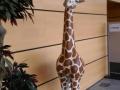 girafon en résine classique 011