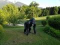 gorille noir en résine classique 011