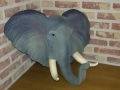tete d'elephant en résine classique 023