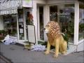lion en resine classique 005