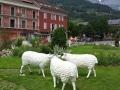 mouton  en résine classique   010