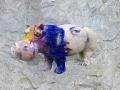 Hippo   en resine style visage