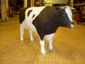 taureau boeuf en résine classique 003