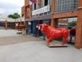 taureau  en résine A1779  design 018