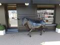 taureau  en résine A1779 design 023