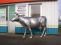 vache en résine FR26 design 099