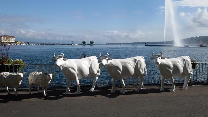 vache en résine L6 design 094