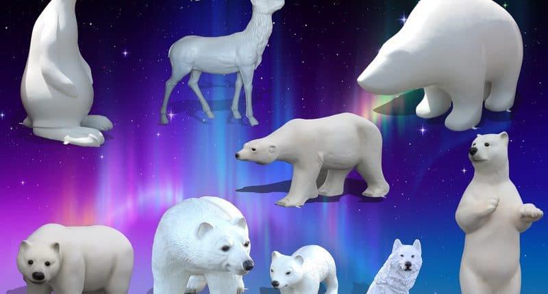 animaux polaire
