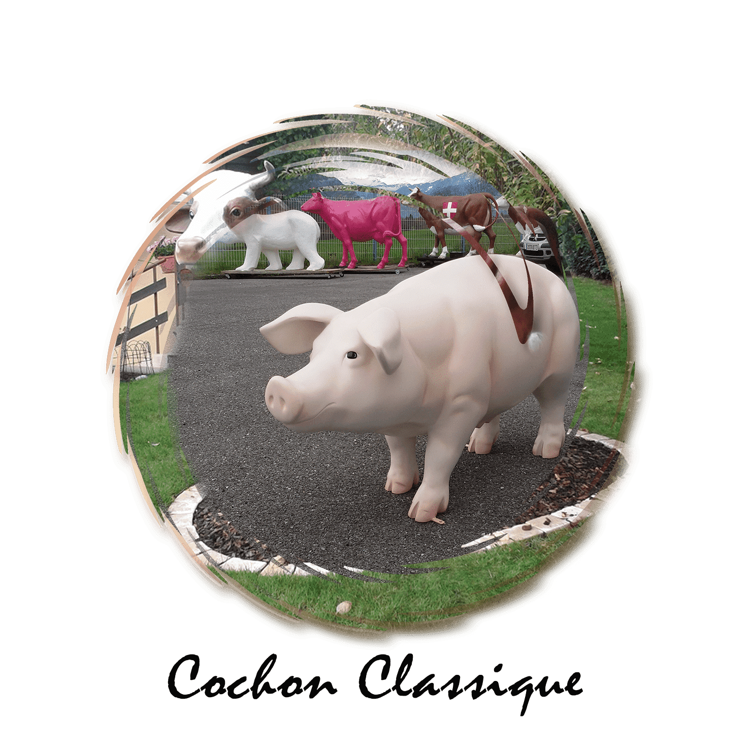 cochon classique