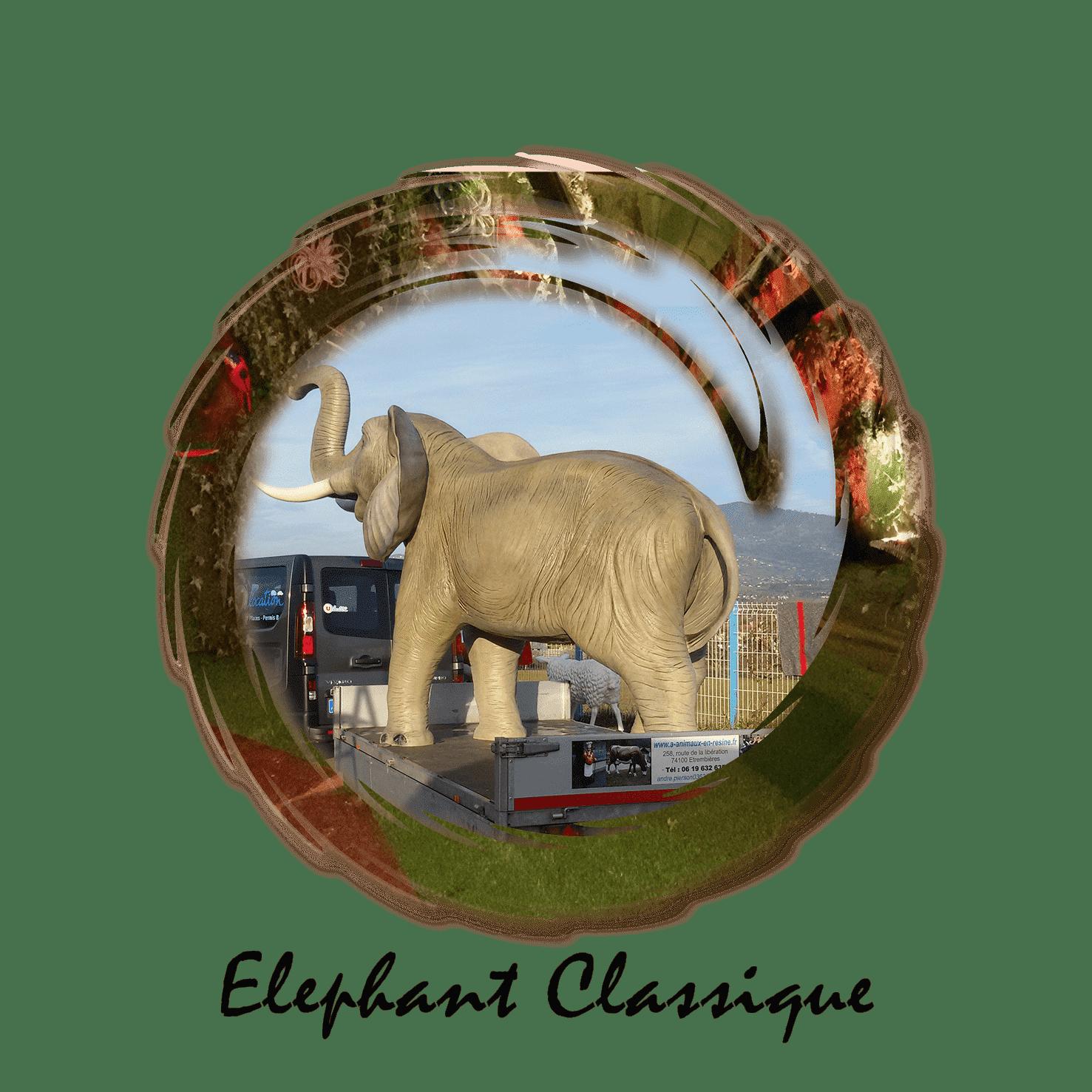 éléphant classique