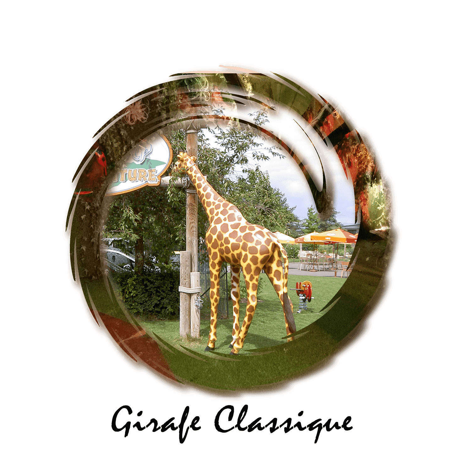 girafe classique