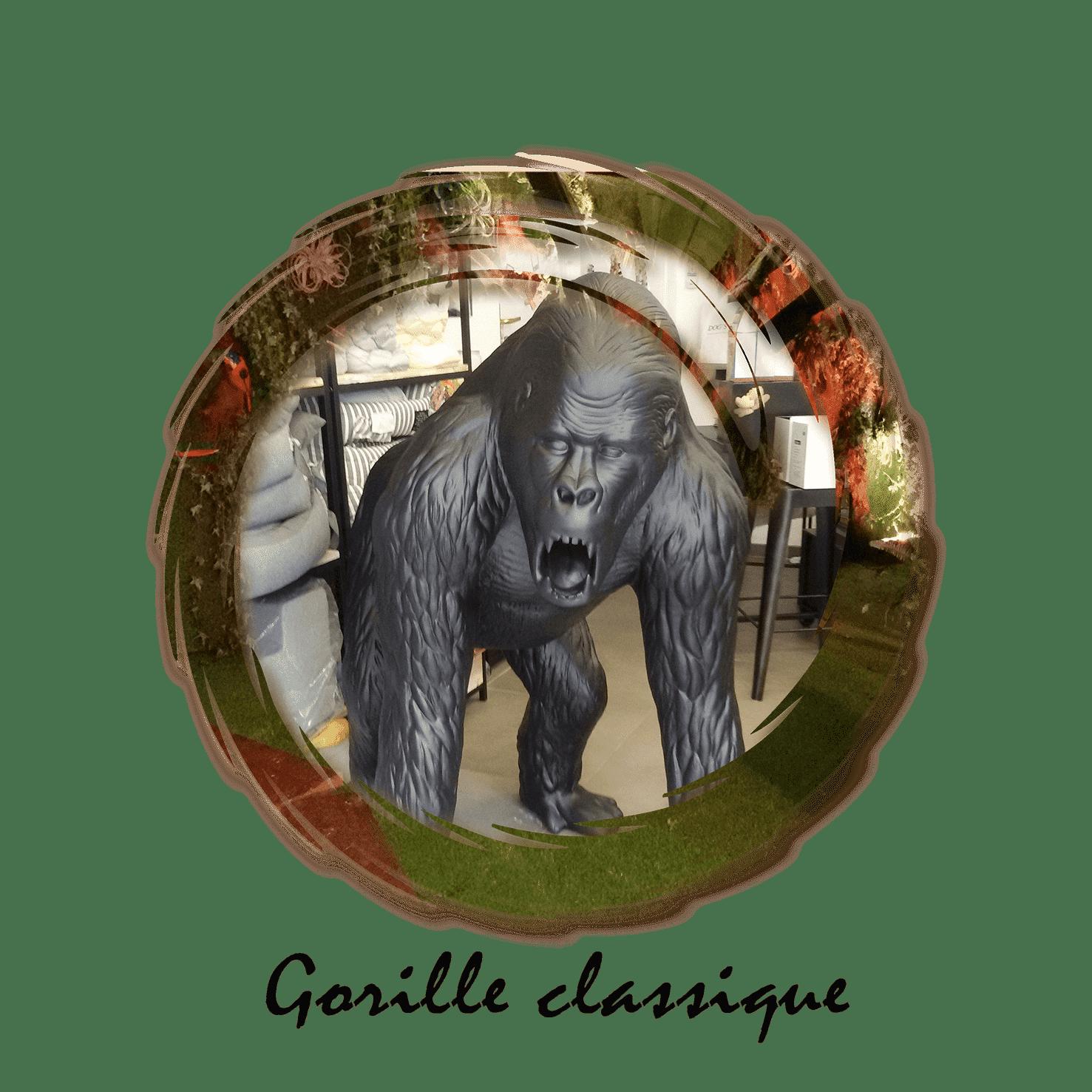 gorille classique