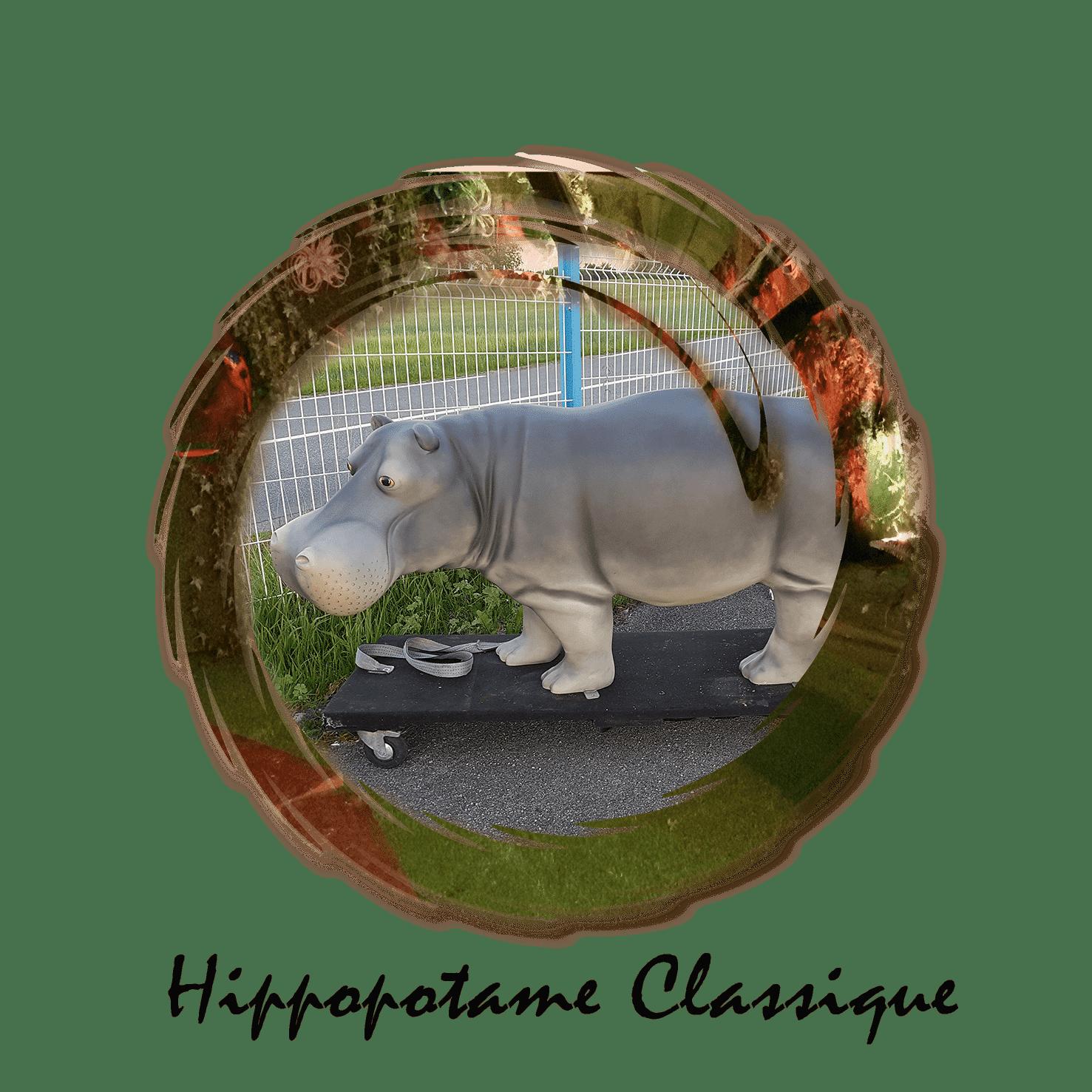 hippopotame classique