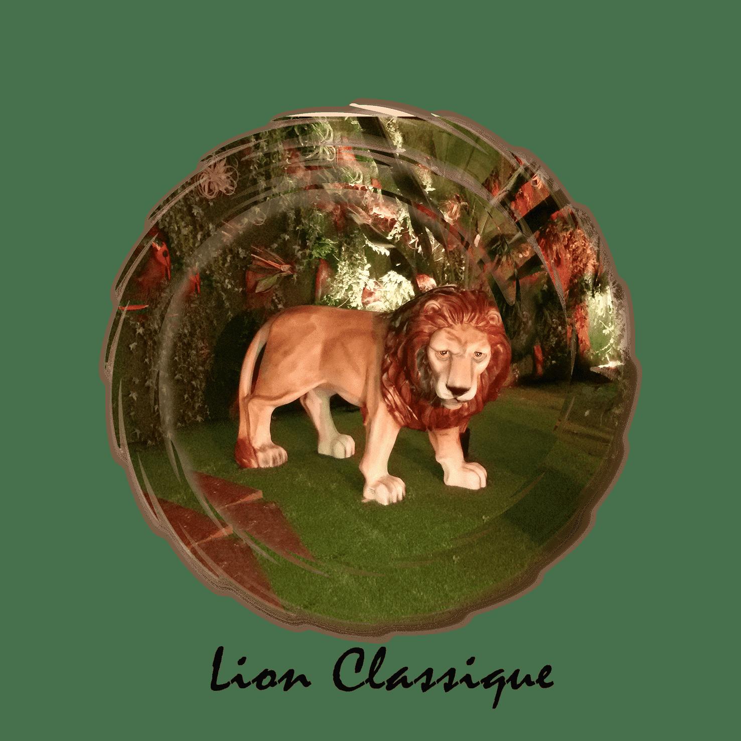 lion classique