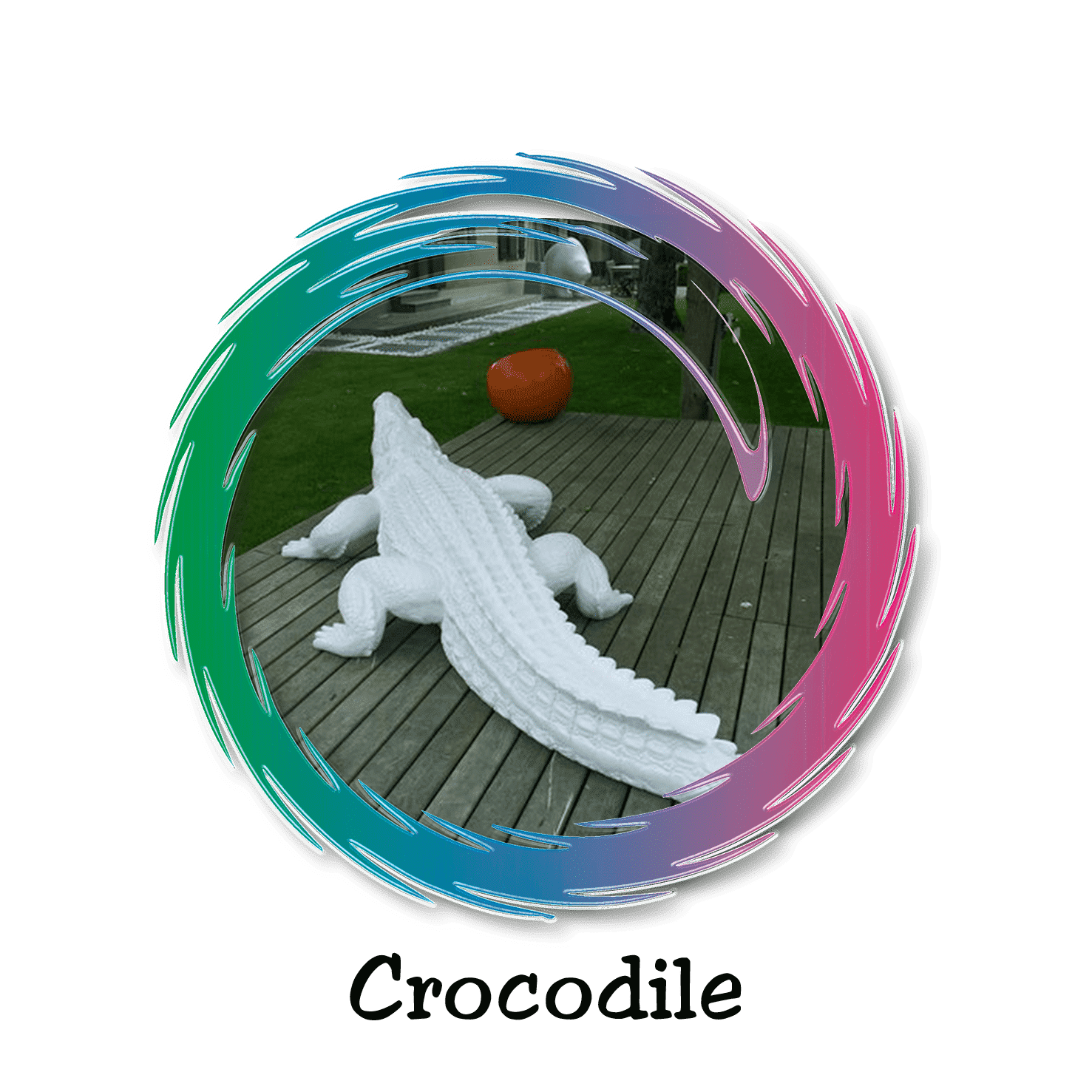 crocodile design