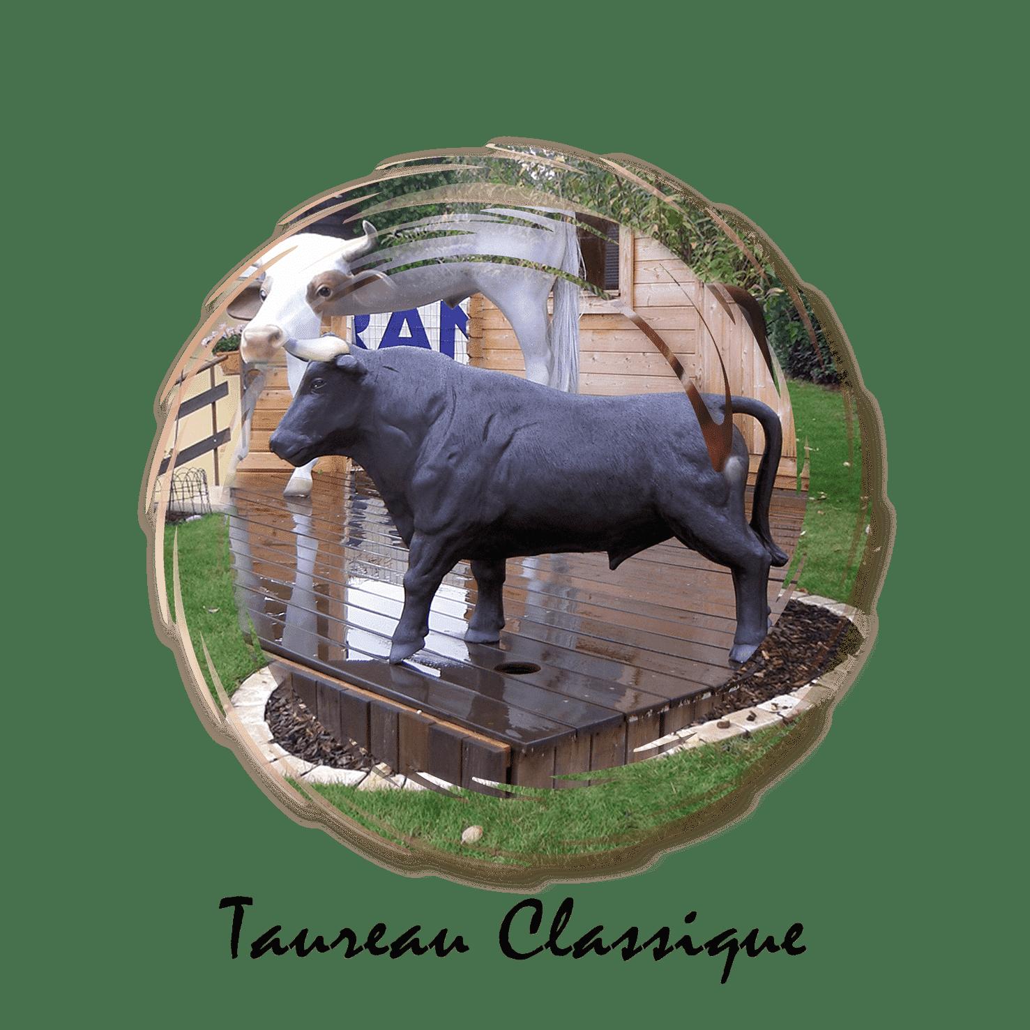 taureau classique