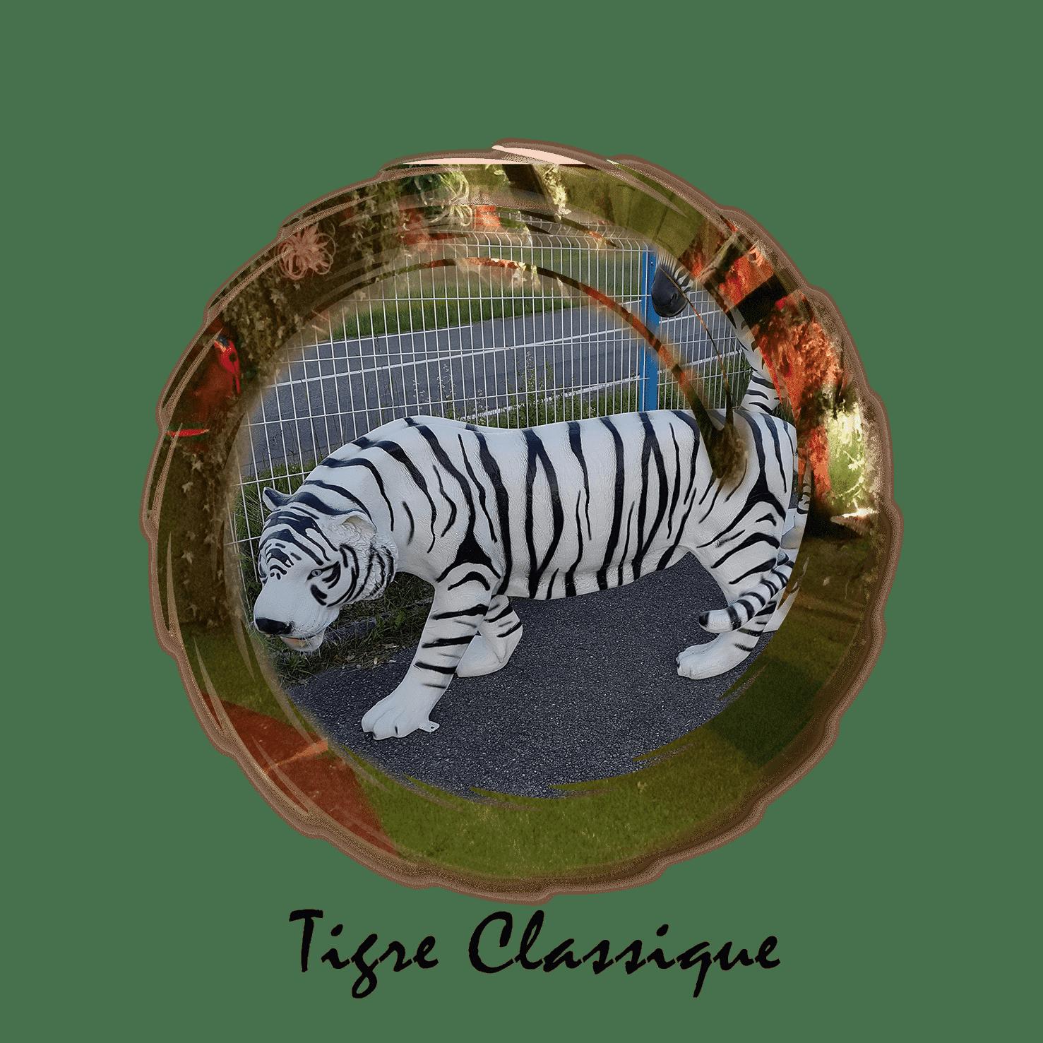 tigre classique