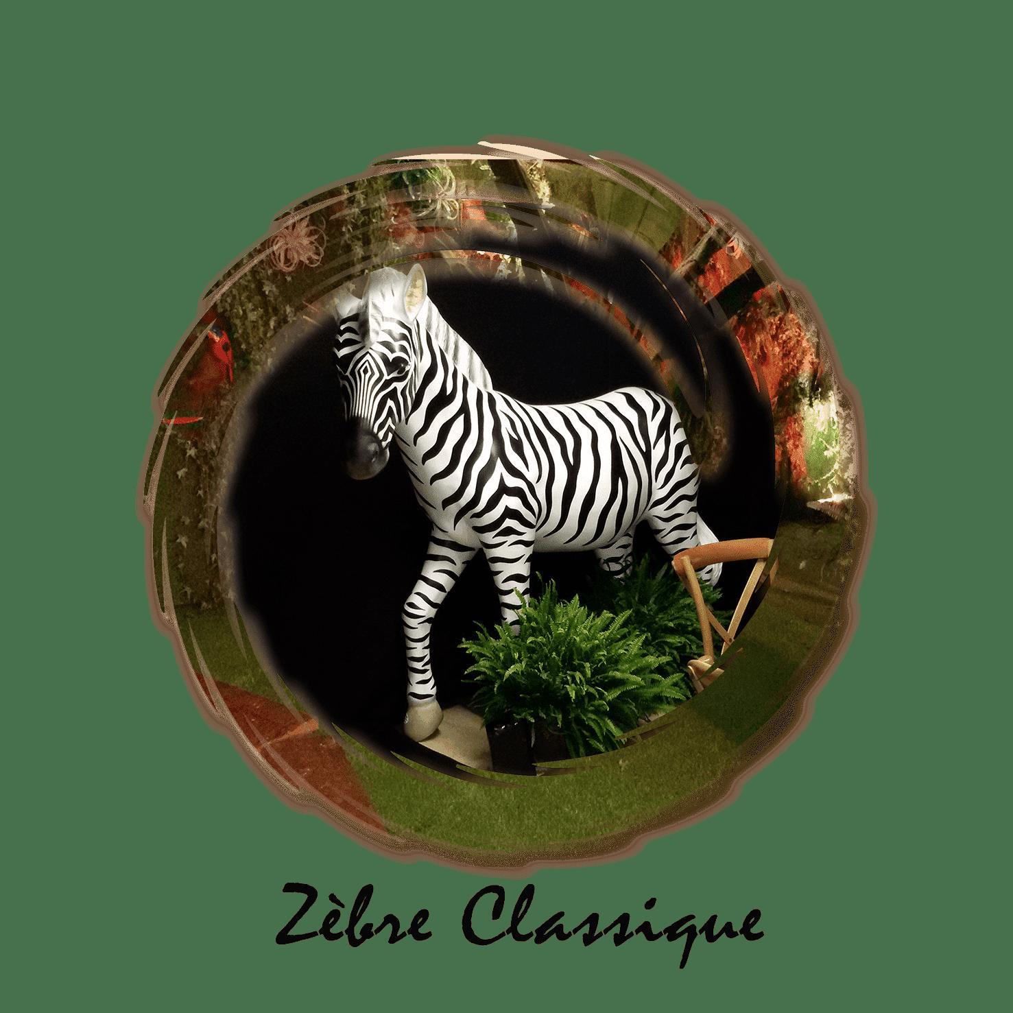 zebre classique